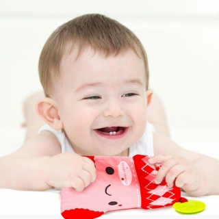 Teething Blanket / Red Milk Box / 99284-2